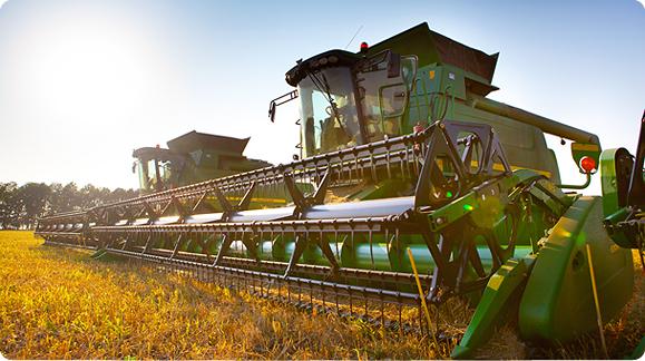 Растениеводство в Атяшево